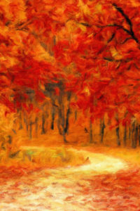 Tree Notebook Covers - Autumn Road