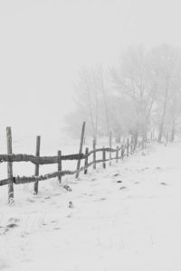 Notebook Covers - Winter Fenceline